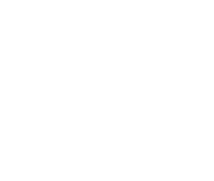 RTI at Work™ Institute