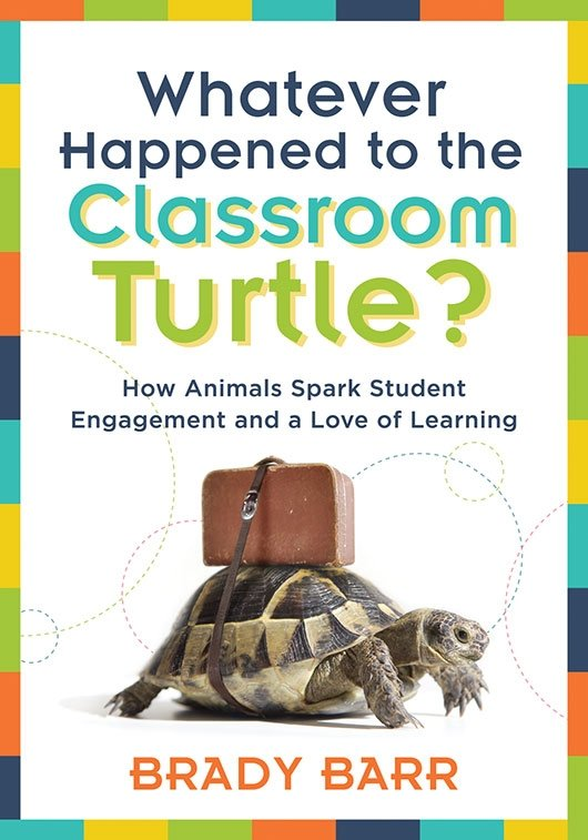 Whatever Happened to the Classroom Turtle?